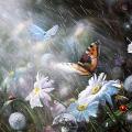 Бабочка и дождик